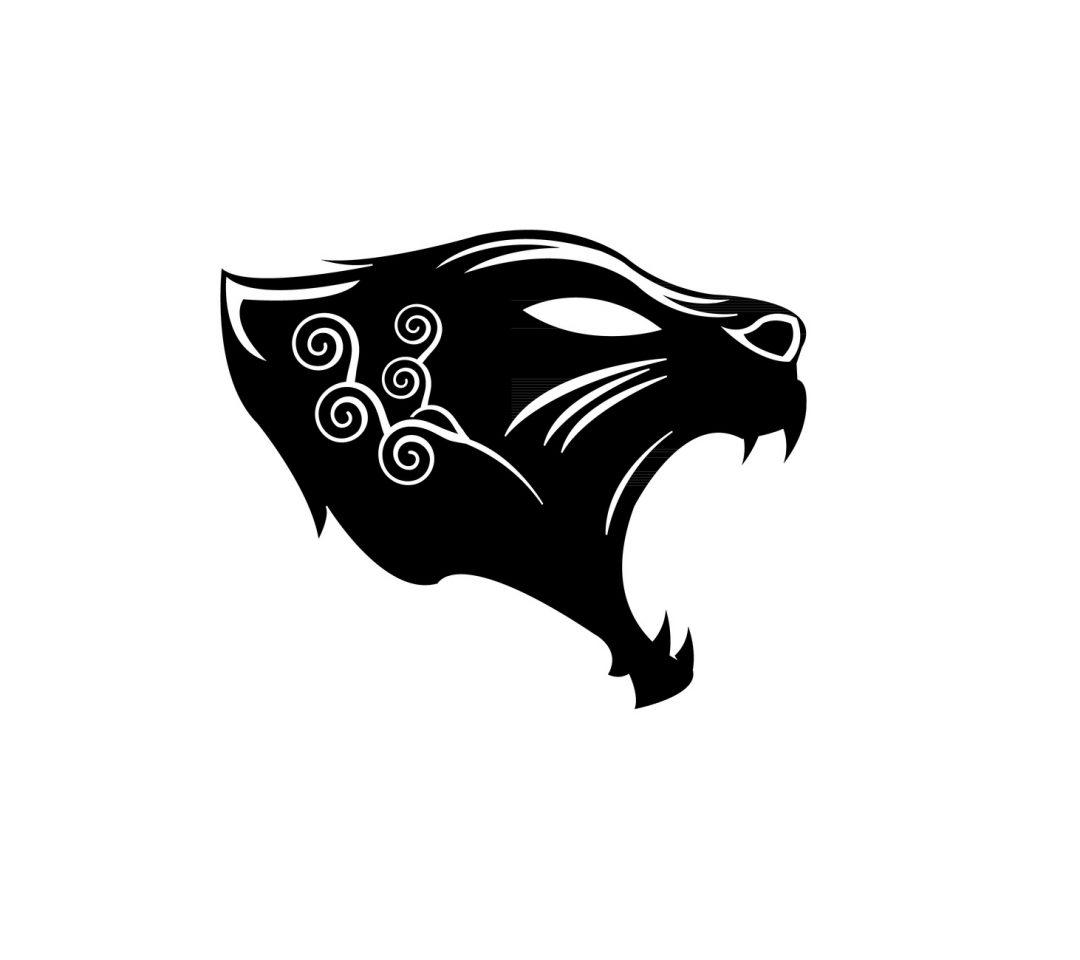 Panthère noire...